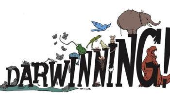 Recensione di Darwinning: quando l'evoluzione diventa un azzardo. Letteralmente.