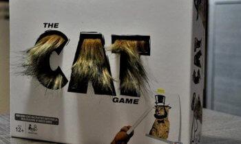 The Cat Game: Il Gioco Che Vi Fara' Drizzare I Peli Dalle Risate!